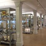 Medizinhistorisches Museum vitrinen mit exponaten