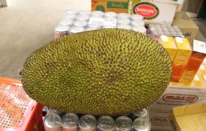 brotfrucht exotische frucht dong xuan center