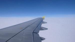 Flugzeug Fluegel