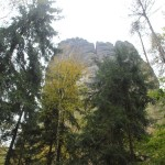 Affenfelsen Elbsandsteingebirge