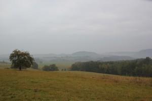 Landschaft Elbsandsteingebirge