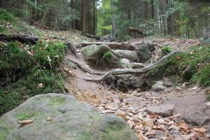 Wanderweg Elbsandsteingebirge