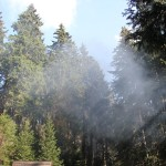 2-12 Rauch der Dampfbahn