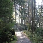 2-2 Feuersteinklippen Harz