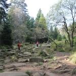 2-45 Steiniger Auf-Abstieg Brocken