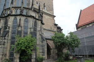 Gartensicht auf Magdeburger Dom
