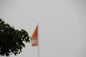 Gruen vor CDU Flagge