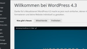 Wordpress update screen