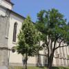 Kirche und ehemaliger Kultplatz der Kelten