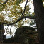 burgruine-neurathen-steine