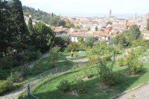 Rosengarten Am Berg Florenz Piazzale Michelangelo
