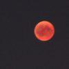 Blutmond 5 - Vollphase