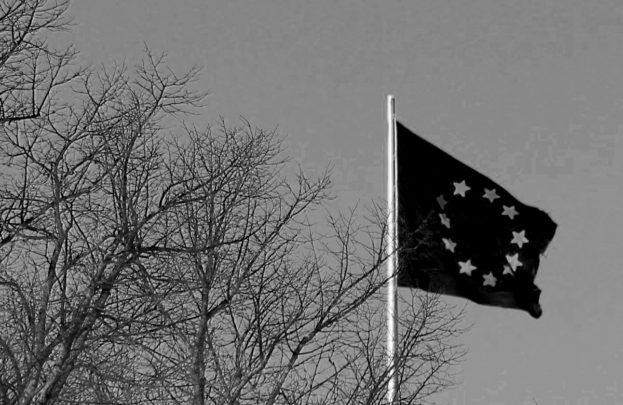 Schwarze Europaflagge